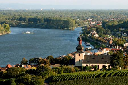 Boat and Bike - Bike tour along Rhine and Neckar on the MS Patria